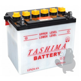 BATTERIE 12N24.4A ( F641 )